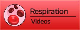 Respiration Videos